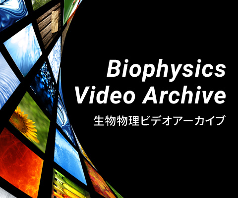 Biophysics Video Archive